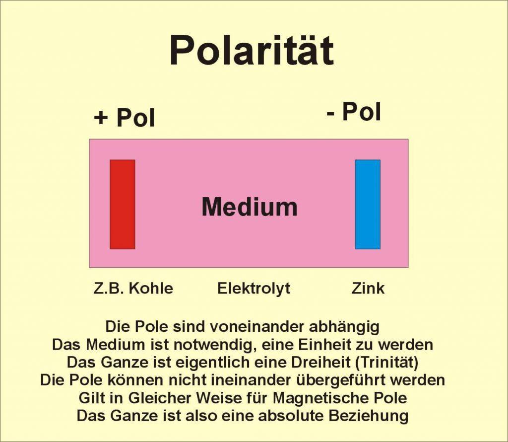 Polaritaet